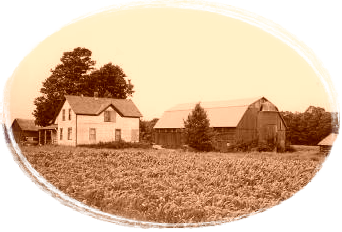 farm house with corn field in foreground